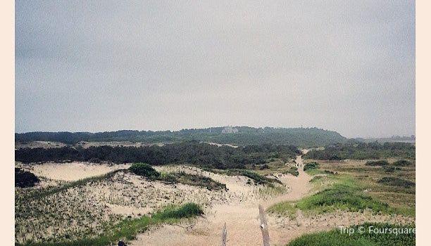 Race Point Beach3