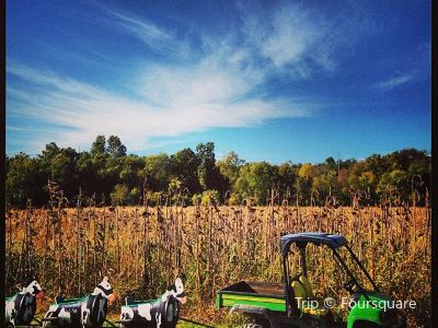 Rutledge-Wilson Farm Community Park