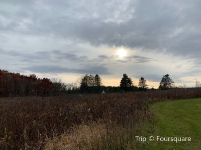 Hawthorn Hollow - Nature Sanctuary and Arboretum