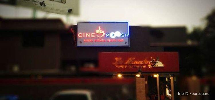 Cine Moosh1