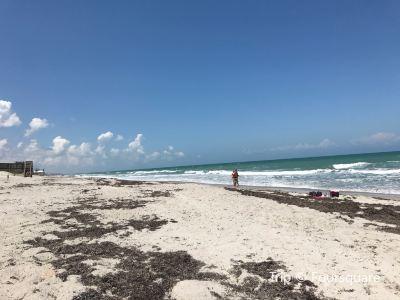 Pelican Beach Park