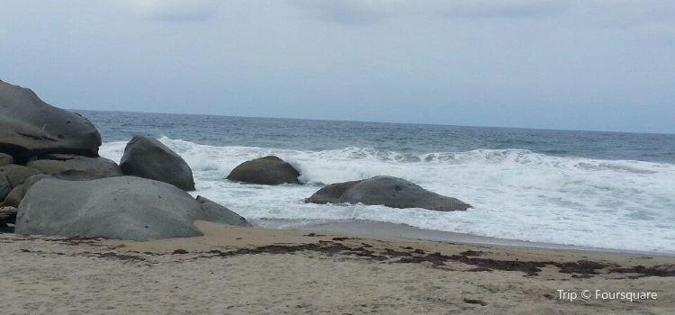 Playa Cañaveral3