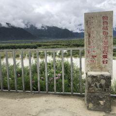 苯日神山用戶圖片