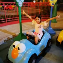 Flying Snoopy User Photo