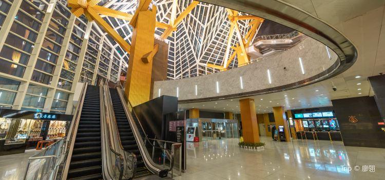 Shenzhen Concert Hall3