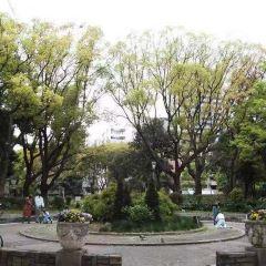 우츠보 공원 여행 사진