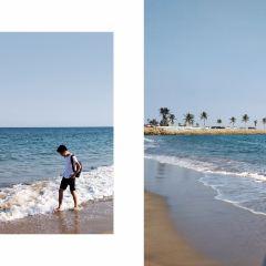 分界洲島用戶圖片