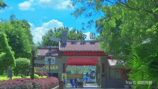 Donghu Lake Zoo, Quanzhou