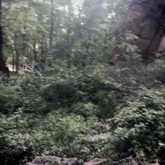 헝터우산  여행 사진