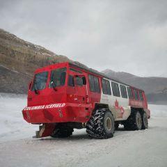 冰原雪車用戶圖片