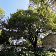 Qianyuan Garden User Photo