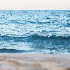 Hammamet Beach用戶圖片