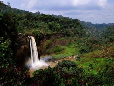 Ekom-Nkam Waterfalls