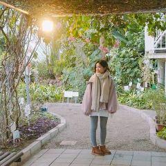 函館市熱帶植物園用戶圖片