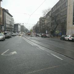 瓦茨街用戶圖片