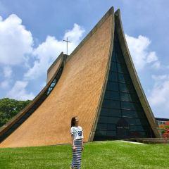 동해대학 여행 사진