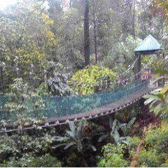 KL Forest Eco Park User Photo