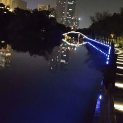 艾溪湖濕地公園用戶圖片