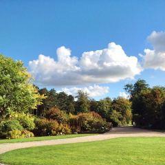 Copenhagen Botanical Garden User Photo