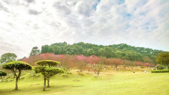 스먼 삼림공원