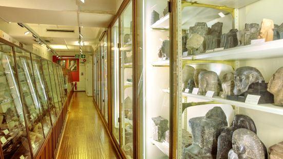 패트리 이집트 고고학 박물관