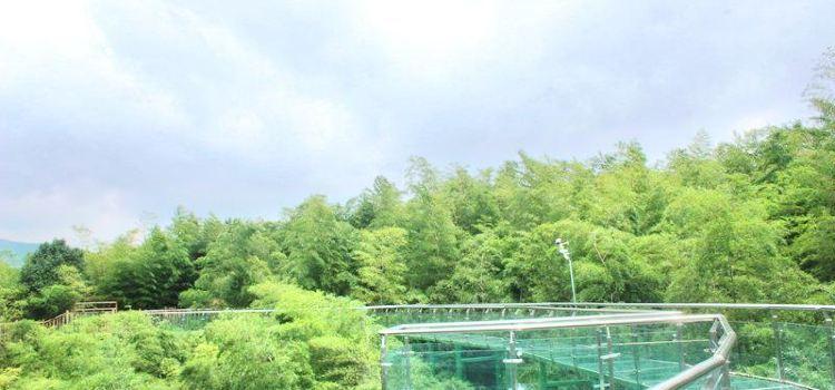 竹尖玻璃棧道
