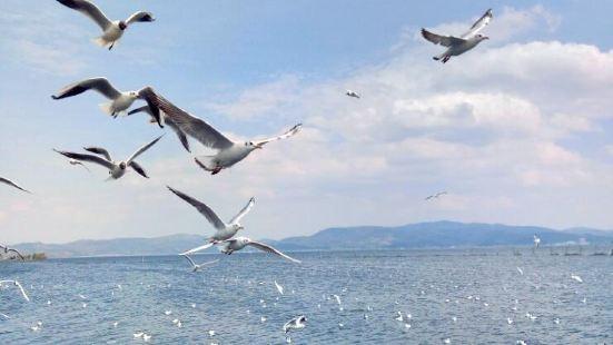Qilu Lake
