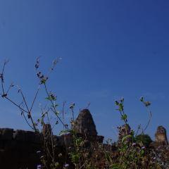 이스트 메본 여행 사진