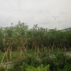 라오와이탄(노외탄) 여행 사진