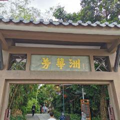 Fanghuazhou User Photo