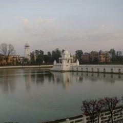 王后湖用戶圖片