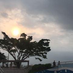 南丫島用戶圖片