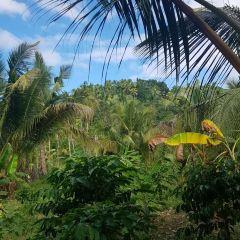Kaputian Beach User Photo