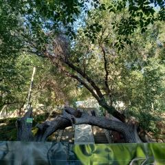 水磨溝公園のユーザー投稿写真