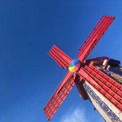 대동하늘공원 여행 사진