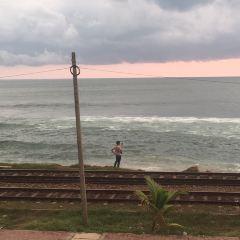 Colombo Walks用戶圖片