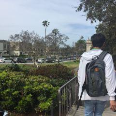 University of San Diego USD用戶圖片