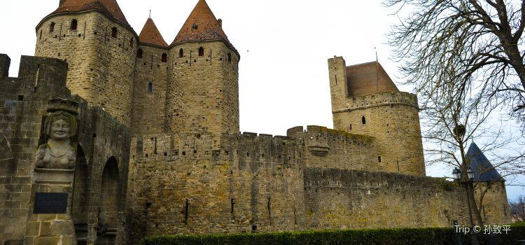 Carcassonne Castle2