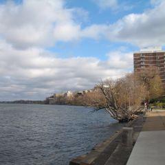 University of Wisconsin-Madison User Photo