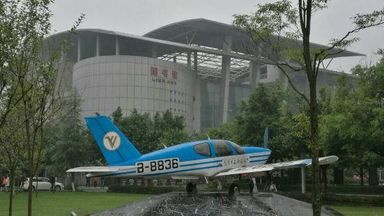中國民航飛行學院