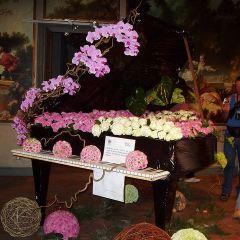 弗拉戈納爾博物館用戶圖片