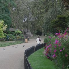 St James's Park User Photo