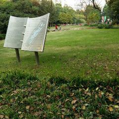 麗園公園用戶圖片