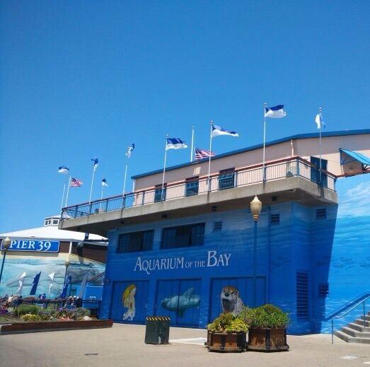 海灣水族館