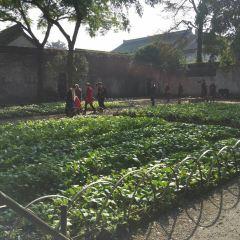 百草園用戶圖片