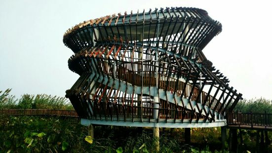 洪澤湖濕地自然保護區