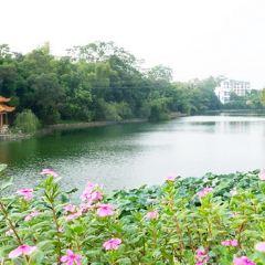 Guangxi University for Nationalities User Photo