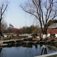 梅花山のユーザー投稿写真