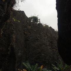 乃古石林用戶圖片