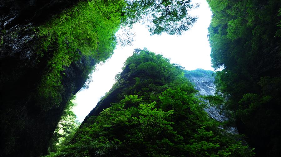 金絲峽景區